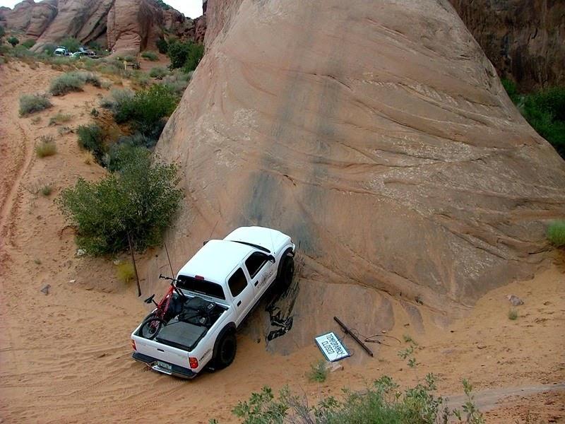 lions-back-moab-5