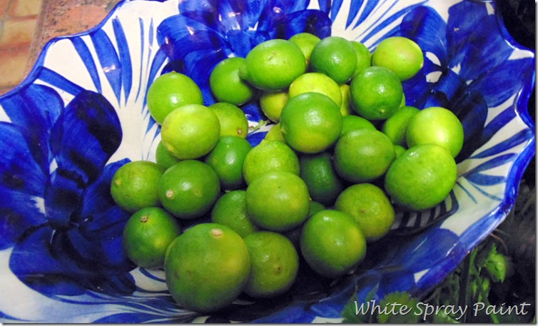 Mexican Limes in aTalavera Bowl