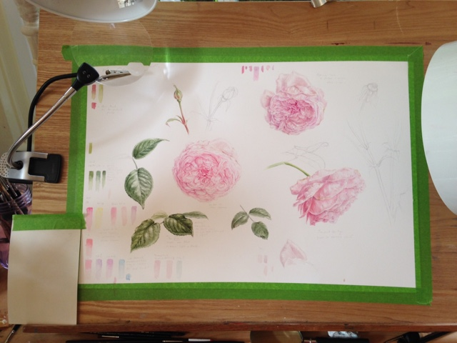 drawing board with roses