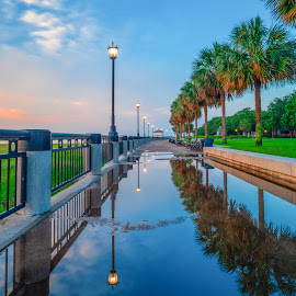 Charleston waterfront park at sunrise  by Peter Schoeman - City,  Street & Park  City Parks ( fountain, usa, palm, american, scenic, america, scene, view, cityscape, landmark, us, sky, sightseeing, carolina, town, downtown, water, morning, south carolina, waterfront, dawn, colorful, southern, sunrise, city, south, united, destination, tourism, skyline, scenery, states, sc, tourist, charleston, public, street, place, park, architecture, famous, historic, nature, attraction, blue, outdoors, location, travel, architectural, landscape )