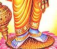 [Vishnu's lotus feet]