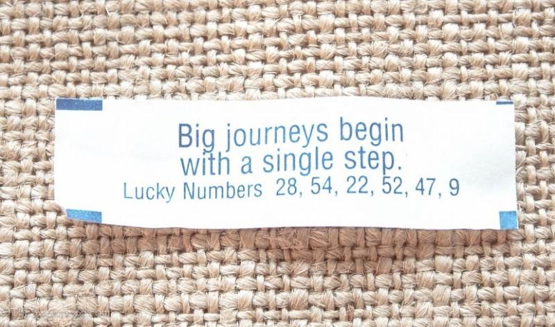 fortune cookies 1 (14)