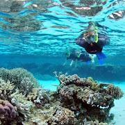 597239752_snorkelling8.jpg