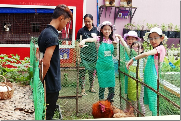 Jensen Kinder Farm Organic Farming for Kids and Adults Quezon City - jotan23 (10)