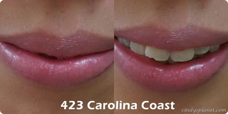 Burts Bees Lip Crayon Carolina Coast