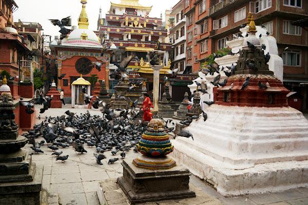 голуби буддизм ступа монастырь катманду