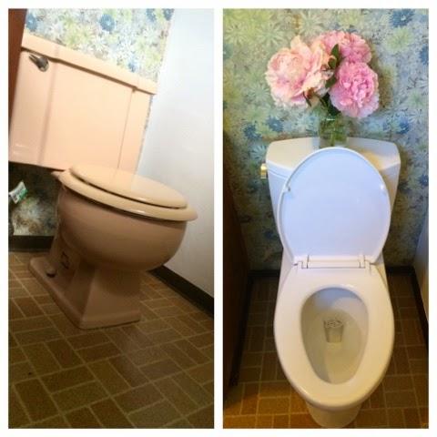 TOTO Drake toilet - cultivatedrambler.com