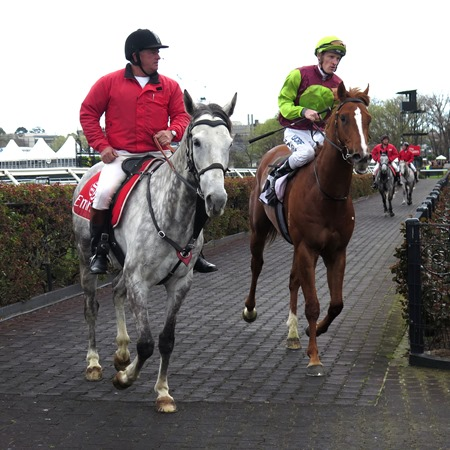 race 3_bon aurum 2