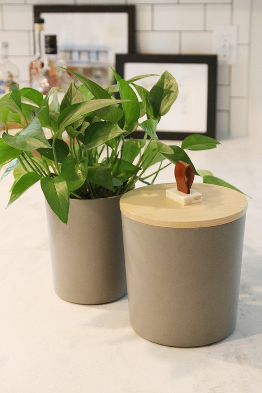 Cat Food Containter and Plant Holder