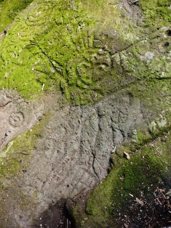 2014_0101-0105 萬山神石、萬山岩雕順訪萬頭蘭山_0772