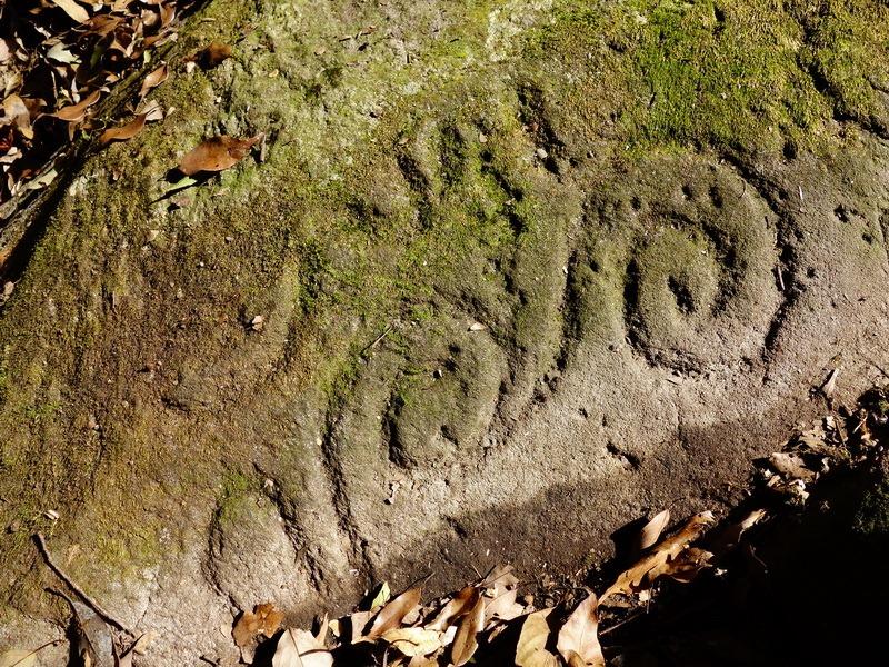 2014_0101-0105 萬山神石、萬山岩雕順訪萬頭蘭山_0664
