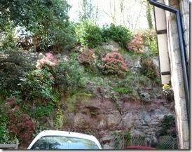 13 cliff garden