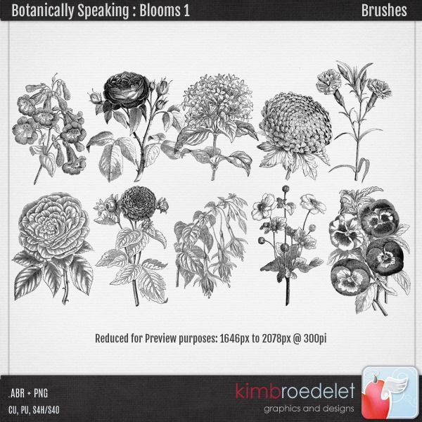 kb-Botanically-Blooms1