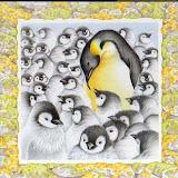 new_little_penguin_spd152_1.jpg