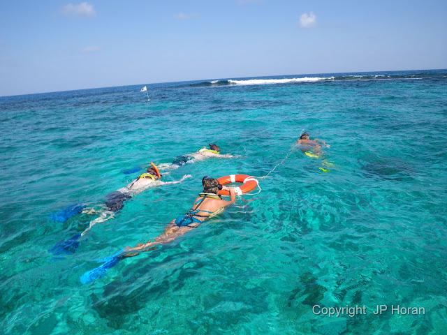 Snorkeling Buck Island Reef