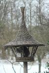 Fuglene er store i Øster Hjerm.... Fuglene er store i Øster Hjerm...