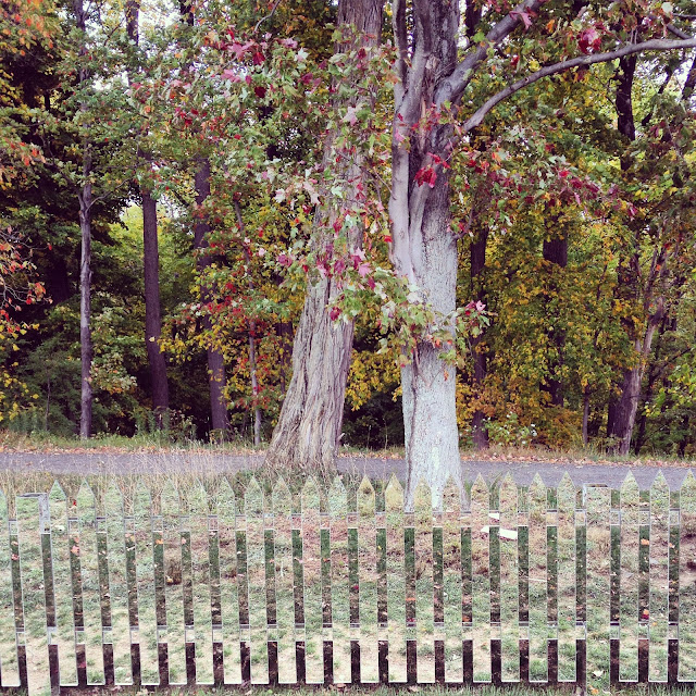Mirror Fence by Alyson Shotz at Storm King Art Center