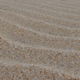 by Eloise Nel - Nature Up Close Sand