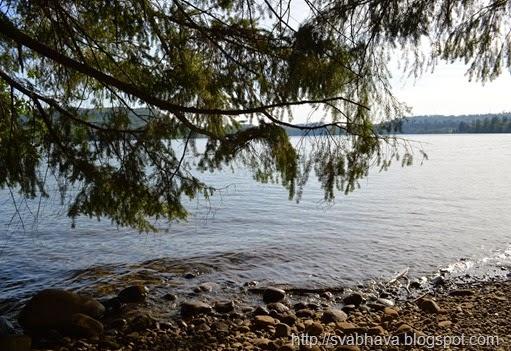 Ike Kinswa State Park Cabin, Lake Mayfield