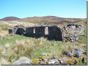 Ruined Cottage of Wag