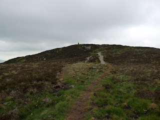 Approaching Gowbarrow Fell Summit. The paths around here seem to be quite new.