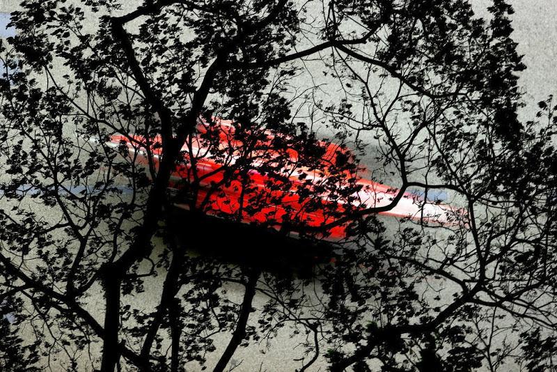 Фернандо Алонсо на Ferrari сквозь деревья на Гран-при Сингапура 2013