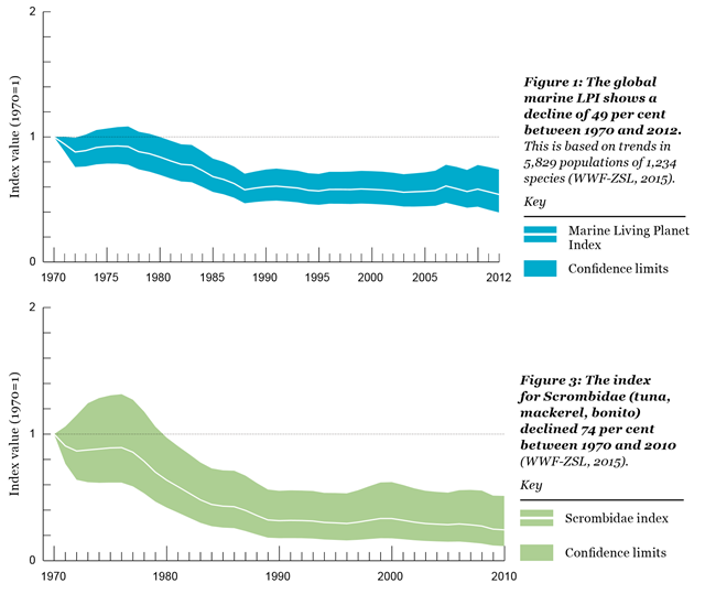 Above: The global marine Living Planet Index (LPI) shows a decline of 49 per cent between 1970 and 2012. This is based on trends in 5,829 populations of 1,234 species. Below: The index for Scrombidae (tuna, mackerel, bonito) declined 74 per cent between 1970 and 2010. Graphic: WWF / ZSL