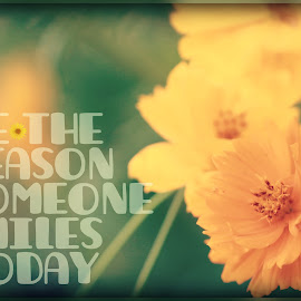 Be the Reason by Tammy Drombolis - Typography Captioned Photos ( kind, uplifting, caption, smile, flower )