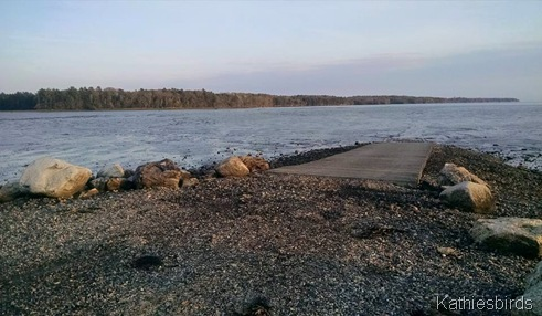 4. 5-17-15 boat ramp at Wharton Point