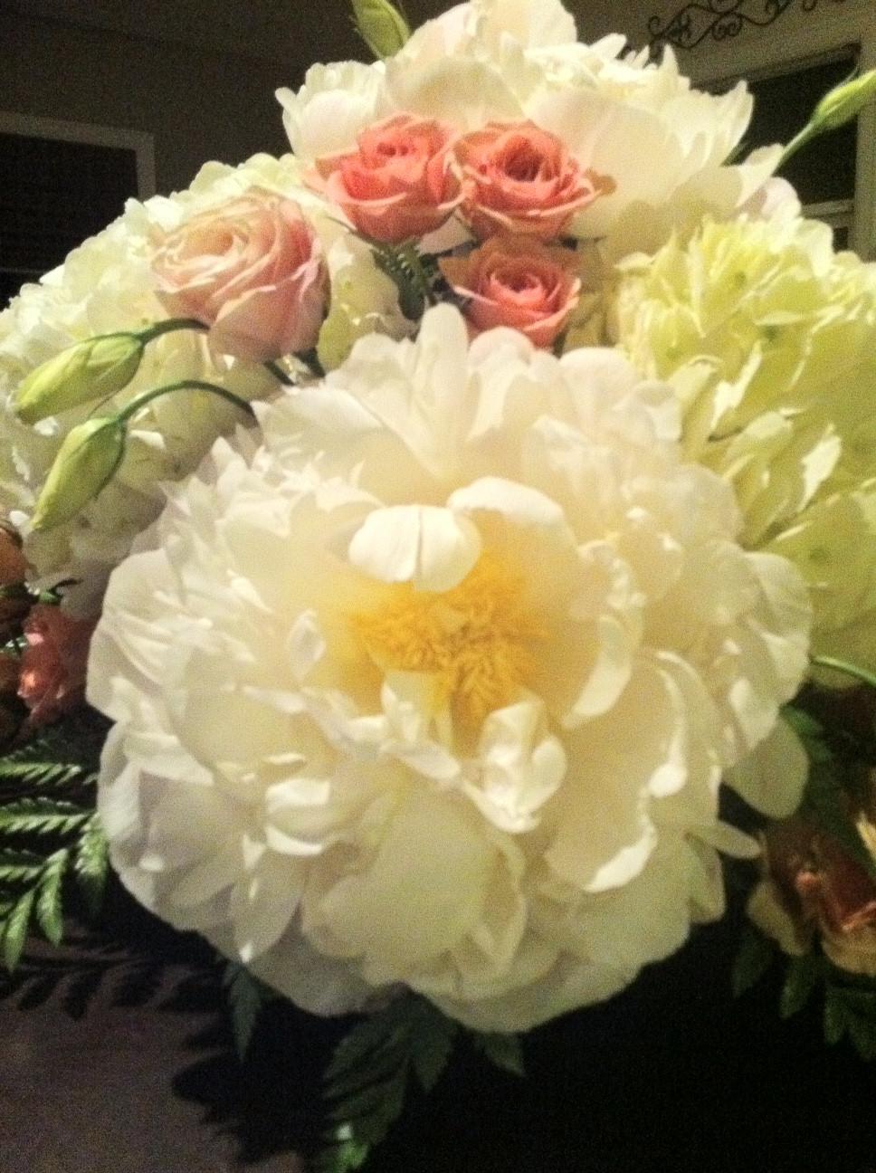 Floral Fantasy Peony