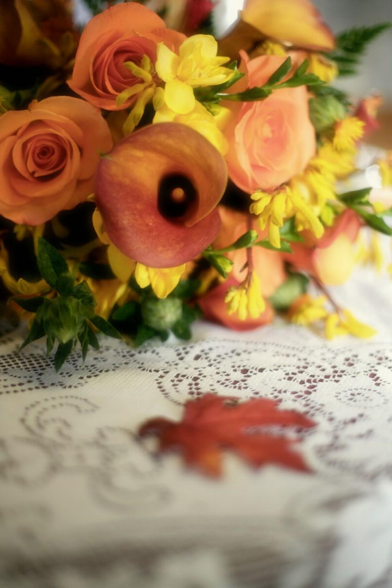 fall color wedding images