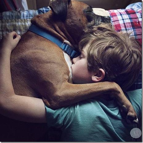 dog-love-friend-003