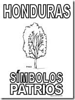 simbolos patrios honduras 2