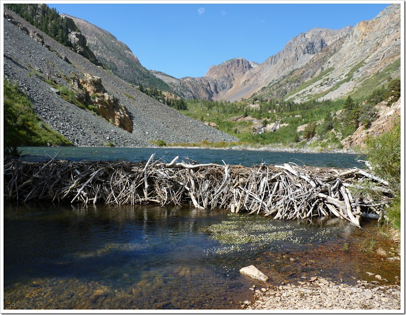Lundy Canyon CA Hike-Beaver Pond