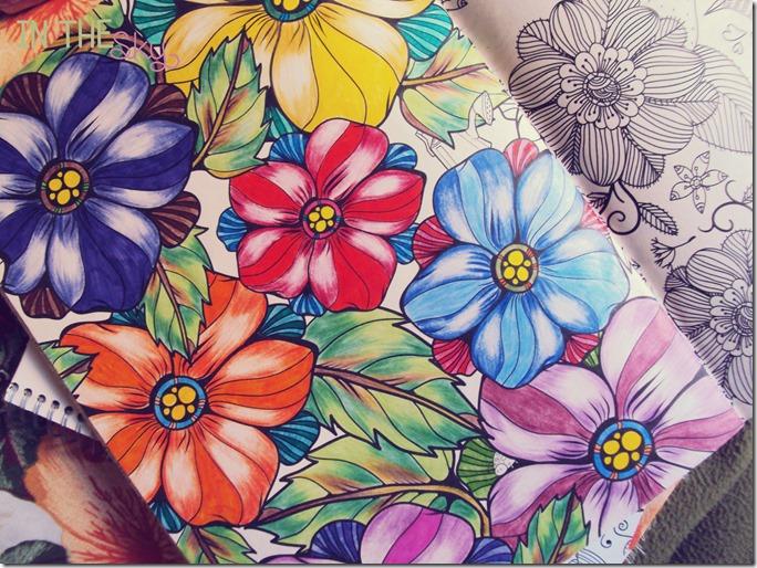 colorindo06