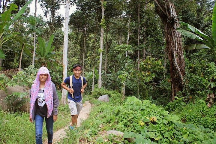 jalur menuju gunung pembarungan desa tibakan anreapi polewali mandar