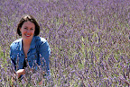 Hilary in Lavender Field (July 2011, WineInProvence)