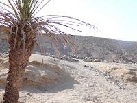 Satul de beduini