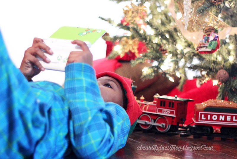 A-Beautiful-Nest-Christmas-2014-on-the-floor