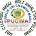 Ubi Cilembu Asli Kwalitas Pilihan dari PUCIMA