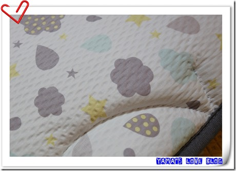 DSC03246
