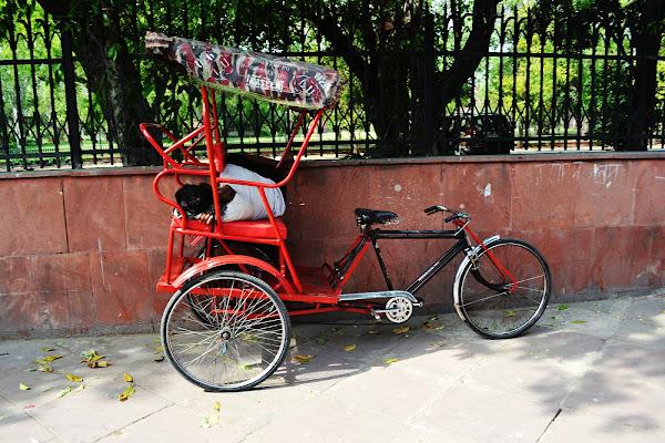 велорикша индия