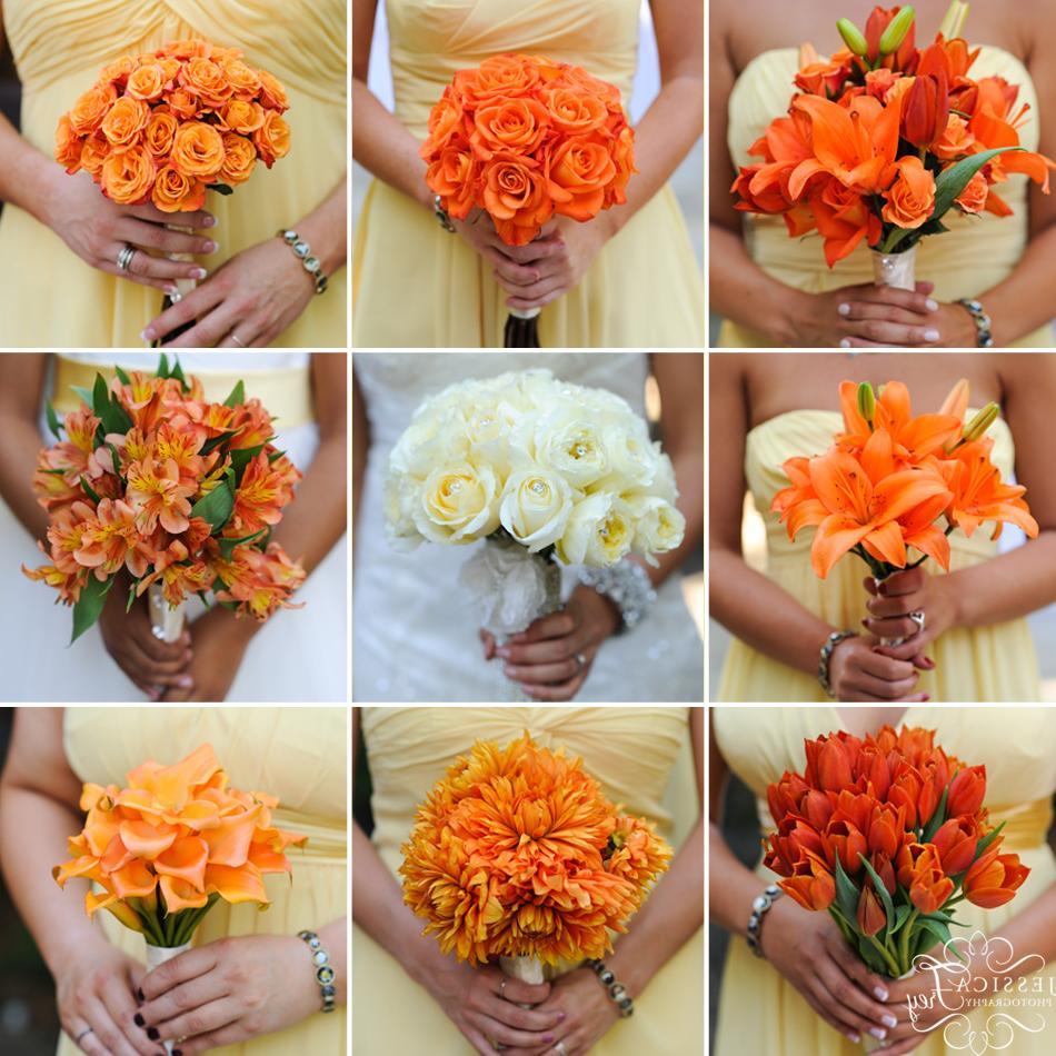 Forrest Hill Wedding     Gina &