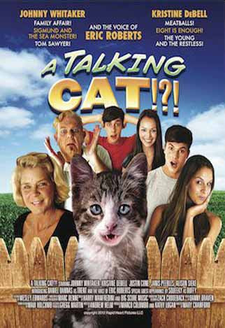 A Talking Cat 2013