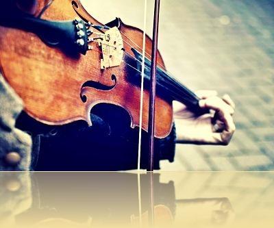 violin_opt