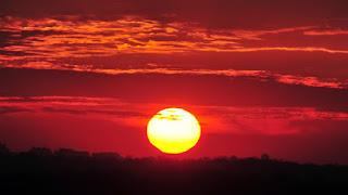 L'année 2015 a été de loin l'année la plus chaude jamais enregistrée au plan mondial