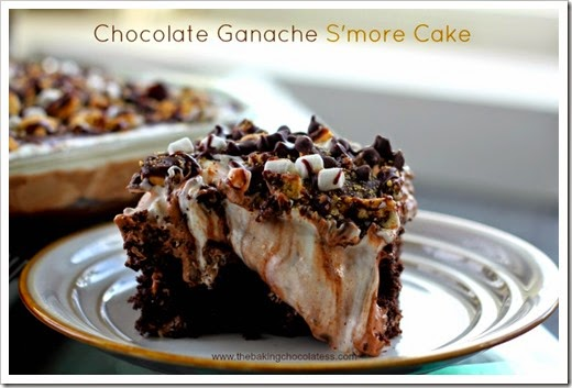Chocolate-Ganache-Smore-Cake8