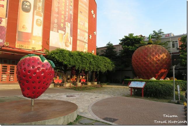 大湖草莓 (24)