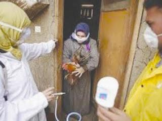 La grippe a tué 27 personnes durant le premier trimestre 2015