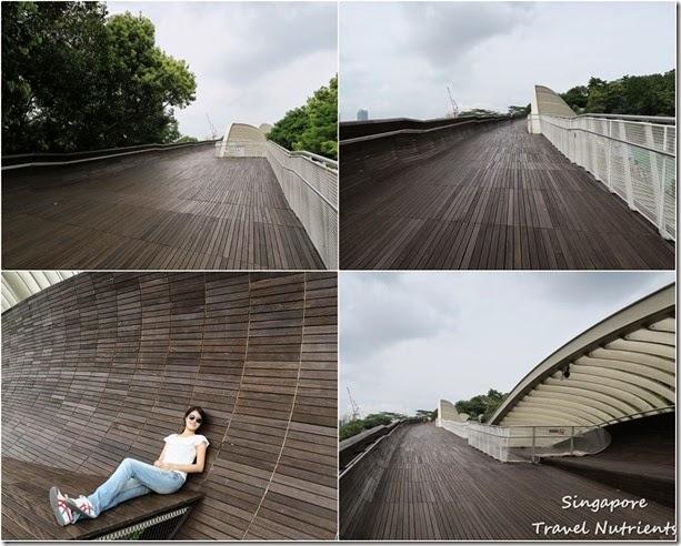 新加坡花柏山 (107)